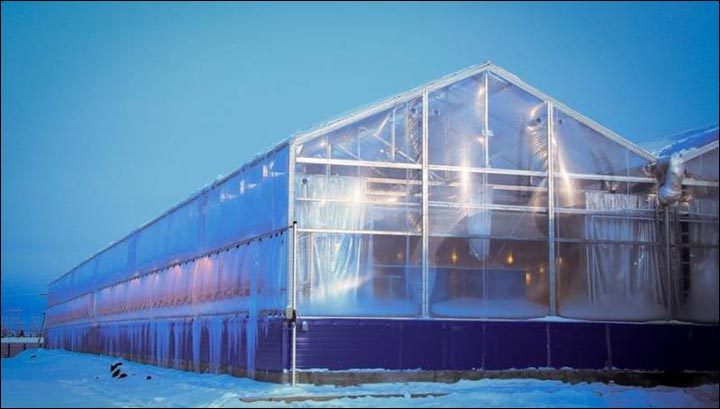 Greenhouse outside